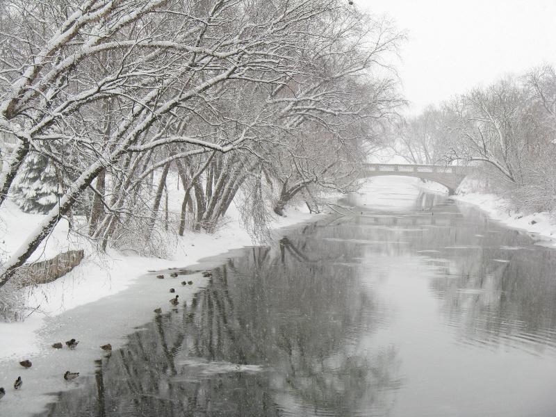 snowy-river.jpg