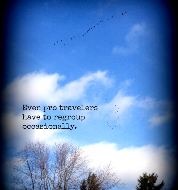 Travelers Regroup